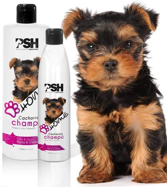 PSH HOME PUPPY & KITTY SHAMPOO 250 ml / PSH Шампунь для щенков и котят домашний